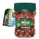 fruta-desidratada-cranberry-brasil-frutt-160g-Drogaria-SP-502928