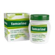 Tamarine Gel 250g