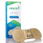 tanyx-c-1-391549-3
