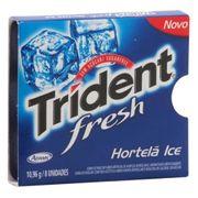 trident-fresh-hortela-ice-10-9g-262510