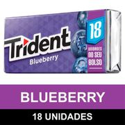 goma-de-mascar-trident-blueberry-com-18un-306gr-kraft-food-Drogaria-SP-666432