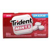 pastilhas-trident-mints-morango-22--5g-drogaria-sp-696412
